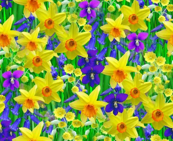 To acquire Flowers spring pictures pictures trends